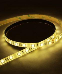 Tira de LED Cálido 5050