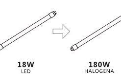 Equivalencia T8 LED