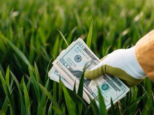 ¿Qué son los impuestos verdes o medioambientales?